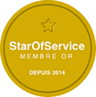 Badge gold star of service